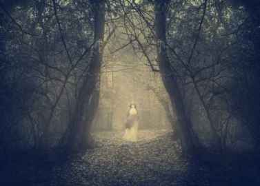 White ghost appears in the forest's mist
